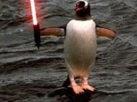 penguinlightsaber